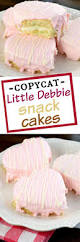 homemade little debbie snack cakes shugary sweets
