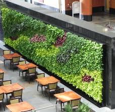 green wall design vertical garden designs living wall design