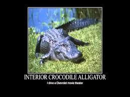 Alligator Meme - interior crocodile alligator know your meme