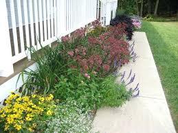 Garden Ideas For Front Of House Garden Ideas Front House Autouslugi Club