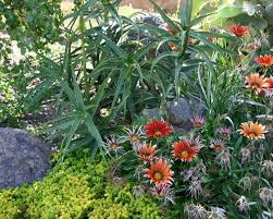 Beautiful Landscaping Ideas Beautiful Landscaping Ideas And Backyard Designs In Spanish And