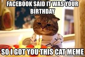 Birthday Facebook Meme - facebook said it was your birthday so i got you this cat meme