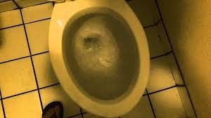 Eljer Patriot Toilet 148 Restraunt With A Eljer Toilet Youtube