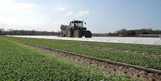 chambre agriculture loire chambre agriculture 53 les actualités d adima et de salin