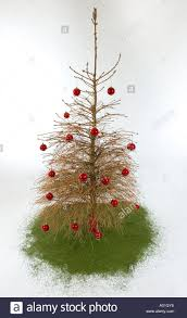inspiration 90 christmas tree without ornaments design ideas of