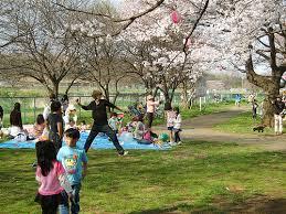 baseball in the park laurent fintoni flickr