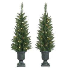 sterling 3 5 ft indoor pre lit potted pine artificial