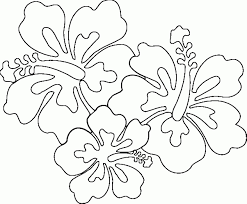 coloring pages of hawaiian flowers coloring page pedia