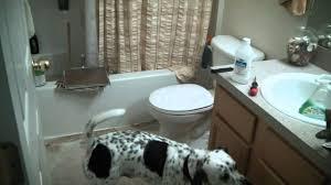 diy self stick tile laying u0026 bathroom renovation home improvement