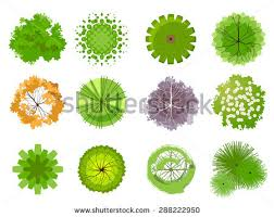 trees top view easy use your stock vector 134244833