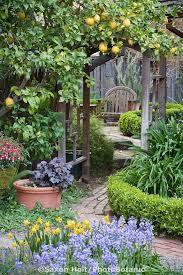 ourdoor u0026 garden holicoffee