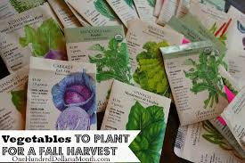planting a fall vegetable garden time to start your seeds one
