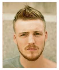 short european mens hairstyle or short curly hairstyle for men
