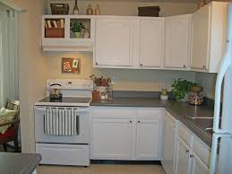 Best Paint To Paint Kitchen Cabinets by Review For Selecting Best Value Kitchen Cabinets Home And