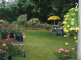 backyard garden plans quality home design part rose our open house