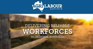 territory manager job in adelaide seek