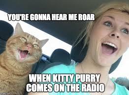 Radio Meme - i love top furry radio imgflip