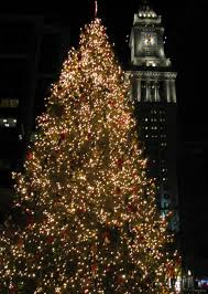 Professional Christmas Tree Decorators Home