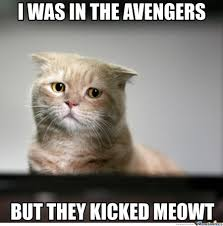 Sad Kitten Meme - sad kitten meme 28 images sad cat is sad by heavy meme center