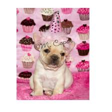 bulldog clipart birthday card pencil and in color