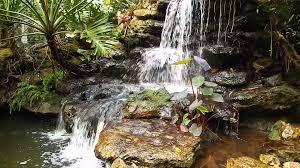 Botanical Gardens Sarasota Fl Waterfall Selby Botanical Gardens Sarasota Florida
