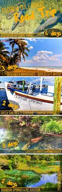 Florida travel pictures images Best 25 florida travel ideas florida vacation jpg