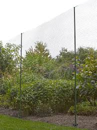50 best deer fence images on pinterest backyard ideas colorado