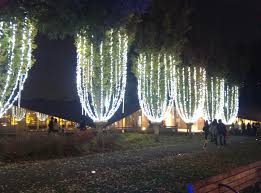 narcoleptic firefly japan christmas winter illumination