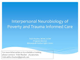 Harbor Light Center Interpersonal Neurobiology Of Poverty And Trauma Informed Care