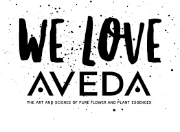 aveda black friday the beauty bar at geist aveda lifestyle salon nail bar skin