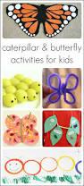 21 caterpillar and butterfly activities