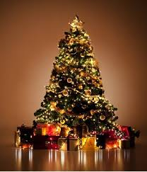 Orange Decorations For Christmas Tree by Top 5 Ideas For Christmas Tree Decorations