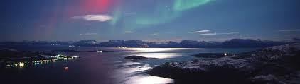 christmas cruises northern lights cruise in norway 8 nights