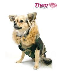 www theo dog vest dog clothes designed by theo theo dog clothing