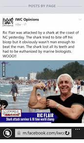 Ric Flair Memes - 25 best memes about ric flair meme ric flair memes