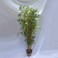 artificial tropical trees for rent lease