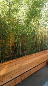 Redwood Planter Boxes by Services Bamboo Sourcery Nursery U0026 Gardens
