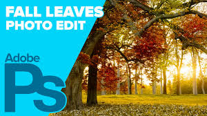 fall autumn how to create fall autumn leaves in adobe photoshop youtube