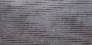 how to clean wall stains how to clean a roof to remove black algae stains today s homeowner