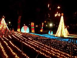 zoo lights lincoln park zoo chicago youtube