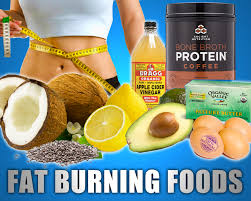 top 10 best fat burning foods for burn calories fat