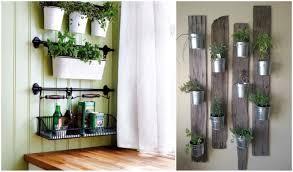 devonleigh tips u0026 tricks easy indoor gardens devonleigh homes