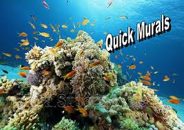 coral reef wall mural fish underwater peel stick self adhesive canvas wall mural