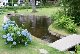 exteriors beautiful your patio idea fish for small pond ideas