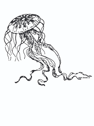 nice jellyfish coloring pages top child colori 7729 unknown