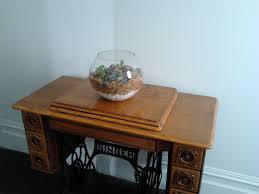 making a terrarium u2013 kiwihome