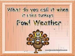 thanksgiving turkey jokes thanksgiving humor turkey