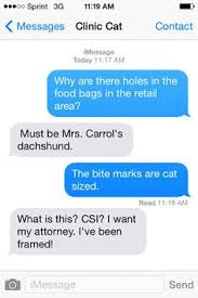 cc your veterinary clinic cat gets helpful around your