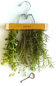 Diy Garden And Crafts - herb holder diy projects and crafts pinterest herbs gardens