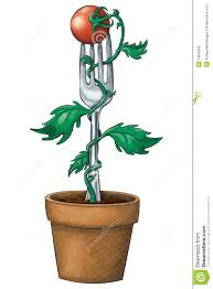 ink and watercolor style potted tomato plant growing on fork